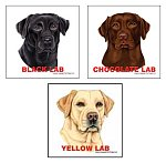 Dog Breed Magnets